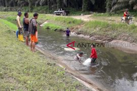 DPUPR targetkan perbaikan irigasi rusak tuntas Juli