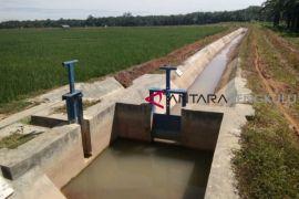 Distan Mukomuko rehabilitasi jaringan irigasi rusak