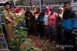 DKP Rejang Lebong berikan pembiayaan dua kelompok wanita tani