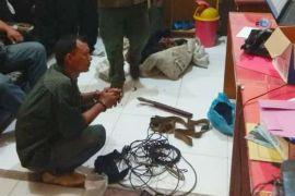 BKSDA Bengkulu tangkap pemburu Harimau Sumatera