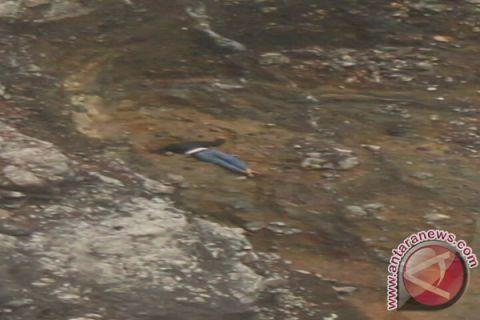 Pendaki Melihat Mayat Di Kawah Bukit Kaba