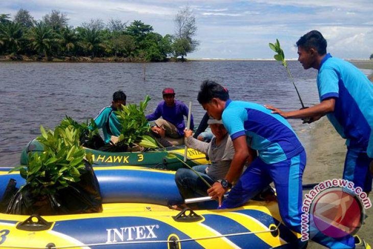 Komunitas-Pelajar Tanam Mangrove Di Muara Kungkai Seluma