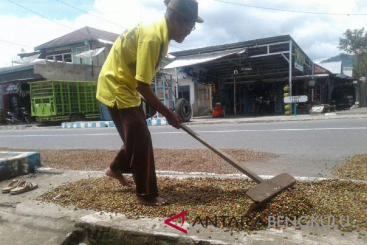 133 petani kopi dapat bantuan usaha HKm