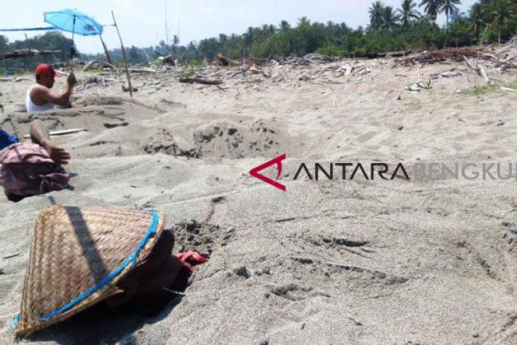 Ada terapi pasir di Pantai Pasar Bawah Bengkulu Selatan