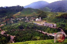 PTPN sediakan lahan untuk PKL Puncak Bogor