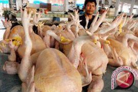 DKP3 Sukabumi perketat peredaran pangan asli hewan