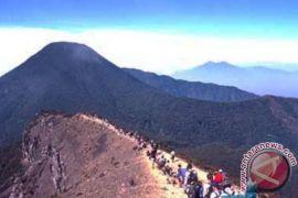 Aktivitas pendakian gunung Halimun Salak tetap dibuka