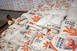 Impor beras sudah mencapai 1,8 juta ton