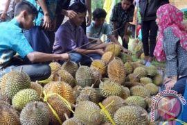 Festival durian di Banyumas