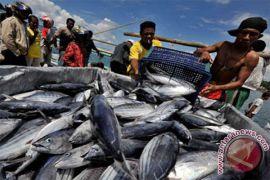 Nelayan Sukabumi Diberdayakan Melalui Ini