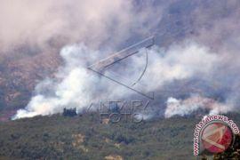 Hutan lereng gunung Slamet terbakar