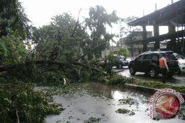 Angin kencang porak porandakan reklame dan pohon di Sukabumi