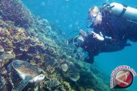 Penyelam Mancanegara Salah Paham tentang Pulau Komodo