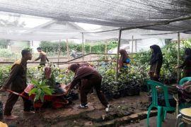 Tim Kementerian LHK Verifikasi 4 Kelompok Tani Di Lampung
