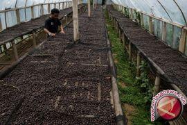 Promosi produk Indonesia perlu digencarkan