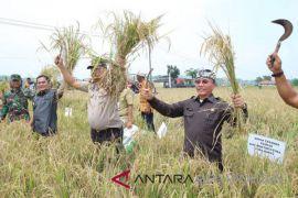 Pemkab Bekasi bersama petani menggelar panen raya