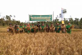STPP Bogor dampingi panen perdana Kabupaten Lingga