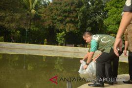 Pemkot Bekasi menyebarluaskan ikan di kolam retensi