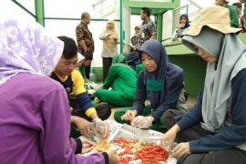 KemenPAN-RB tinjau kesiapan transformasi STPP Bogor