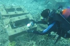 PKSPL IPB pantau terumbu karang di pulau Nyamuk Anambas