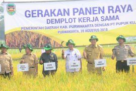 Pupuk Kujang bantu petani Purwakarta tingkatkan produksi