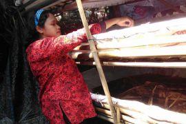 Mahasiswa IPB ajari ibu rumah tangga budidaya cacing untuk tingkatkan ekonomi keluarga
