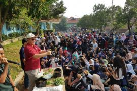 Aksi Rektor IPB tanam hortikultura bersama ribuan mahasiswa baru