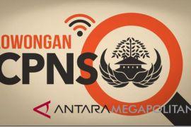 Sebanyak 2.817 pelamar CPNS Lampung lulus seleksi administrasi