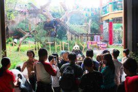 HUT Panda Huchun di TSI bertabur hadiah