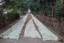 Bappeda: Perencanaan pembangunan di Karawang sudah baik