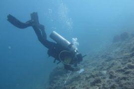 Lestarikan ekosistem terumbu karang Pulau Pramuka, FDC IPB gelar Coralation VII