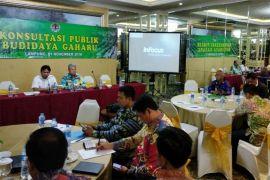Budidaya Tanaman Gaharu Di Lampung Berkembang Pesat