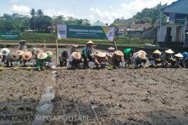 Baznas resmikan Lumbung Pangan di Sukabumi