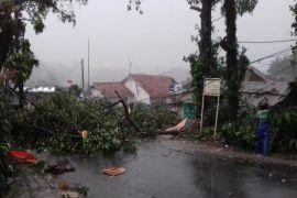 Angin kencang landa Kota Bogor