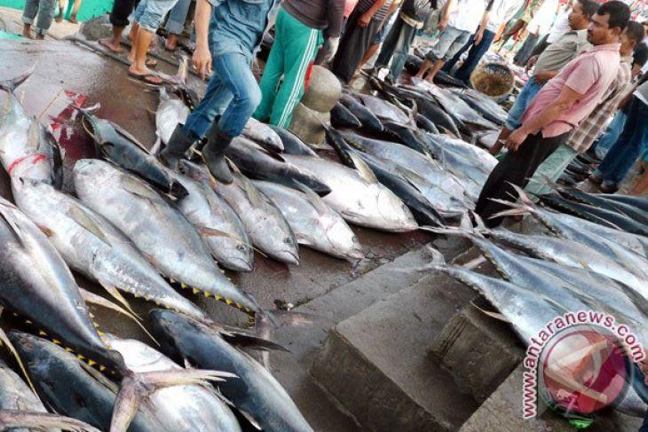 Karawang akan perbaiki seluruh tempat pelelangan ikan