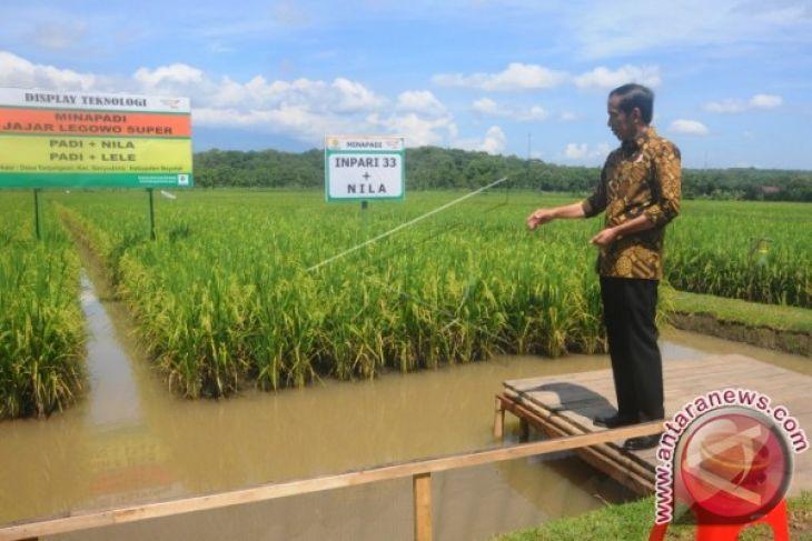 Peta lahan pertanian Indonesia tersedia Daring