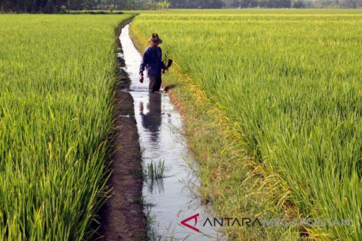 Puluhan ribu petani Purwakarta dimasukan peserta BPJS-TK