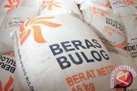 KSP Ungkap Alasan Pemerintah Impor Beras dan Jagung