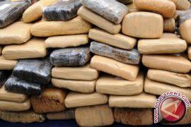 Polisi Gagalkan Pengiriman 510 Kilogram Ganja Ke Jakarta
