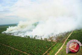Legislator Gorut Imbau Masyarakat Waspada Kebakaran Lahan