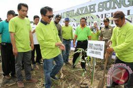 Pemkab Gorontalo Canangkan Gerakan Tanam Serentak