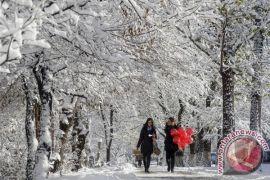 Austria dilanda hujan badai menerjang dan salju tebal