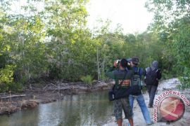 Bksda-Burung Indonesia Identifikasi Burung Di Cagar Alam