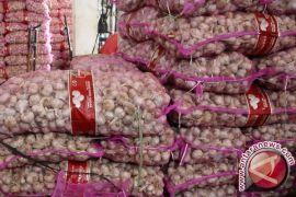 120 Karung Bawang Putih Ilegal Disita di perbatasan RI-Malaysia