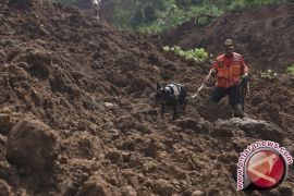 Delapan Orang Meninggal Tertimbun Longsor di Toba Samosir