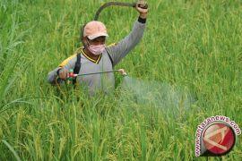 Pemkab Gorontalo Serahkan Bantuan Pada Sanggar Tani Alam