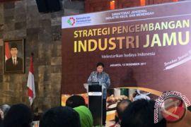 Menteri perindustrian dorong IKM jamu rambah dalam jaringan