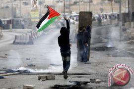 Palestina kecam rencana pembangunan 300 ribu permukiman israel