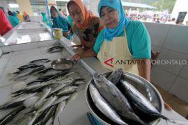 Pemkab Gorontalo Bantu Kotak Pendingin Bagi Pedagang Ikan