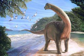 Ilmuan Temukan Fosil dinosaurus Seukuran bus di Mesir